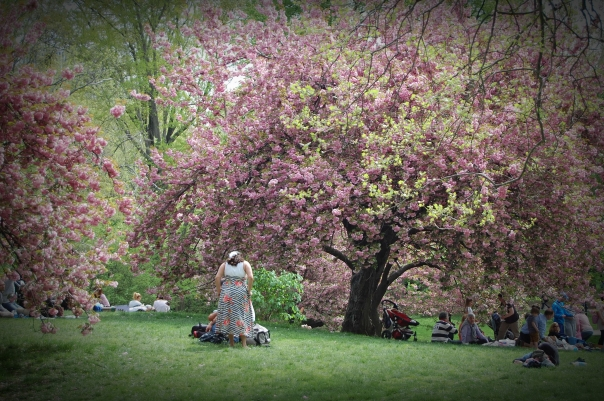 May 1, 2011, Central Park, NYC